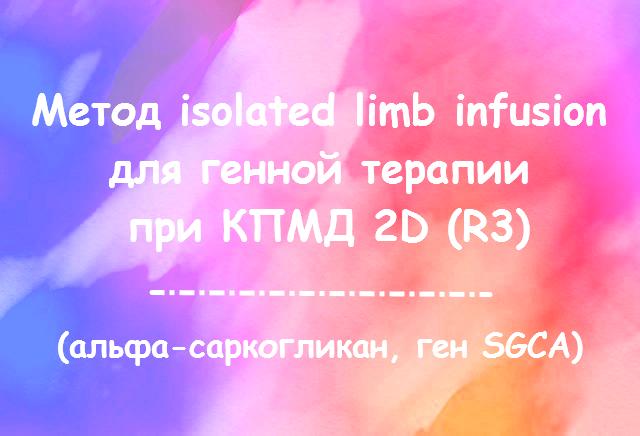 Метод изолированной инфузии для доставки гена SGCA для лечения КПМД 2D